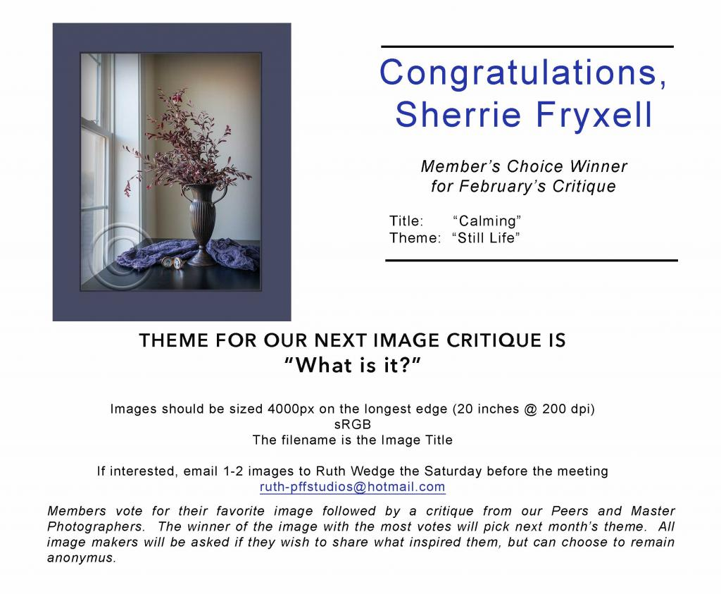 February 2019 Critique Winner